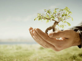 Корпоративная ответственность как неотъемлемая часть современного бизнеса
